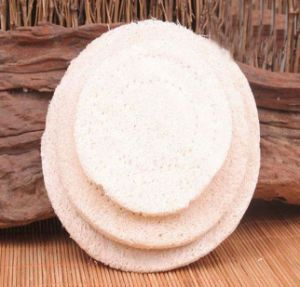 Natural Loofah Pad/ Loofah Coaster/ Loofah Cup Mat pictures & photos