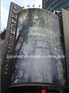 Popular PVC Laminated Flex Banner (500dx500d 13OZ) pictures & photos