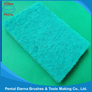 Made in China Kitchen Scouring Pad pictures & photos