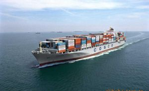 Sea Freight From Shanghai to La Spezia pictures & photos