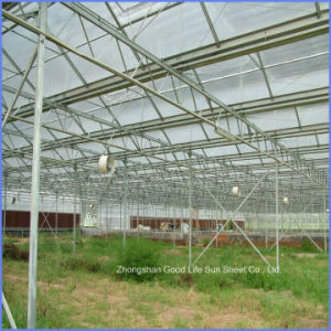 PVC/ Metal/ Composite Polymer/FRP/PE/ Porcelain/Ceramic PC Sheet for Greenhouse pictures & photos