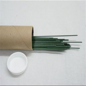 China 10 Years Supplier of Colorful Florist Wire pictures & photos