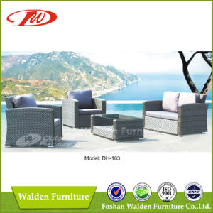 Rattan Sectional Sofa Dh-163 pictures & photos
