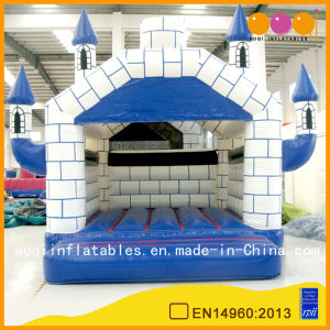 Outdoor or Indoor Inflatable Castle (AQ519) pictures & photos