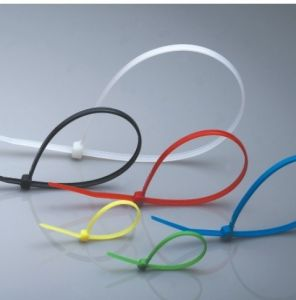 High Quality Nylon Cable Tie pictures & photos