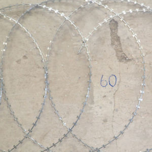 2.4 mm Razor Barbed Wire pictures & photos