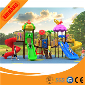 Commercial Outdoor Slide Outdoor Playground pictures & photos