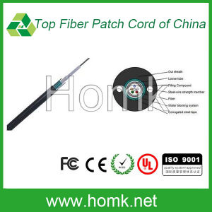 Unitube Armored Outdoor Fiber Cable (GYXTW) pictures & photos