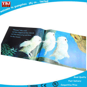 Colorful Printing Personalized Children Books Supplier