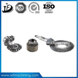 OEM Customized 16mncr5/20mncr5/25mncr5/28mncr5 CNC Machining Exquisite Spur Gears Shaft pictures & photos