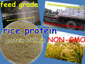 Rice Protein Meal for Feed Grade Protein 60 pictures & photos