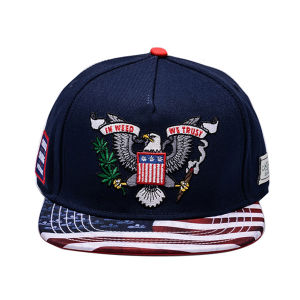 Custom 6 Panel 3D Embroidery Snapback Hat pictures & photos