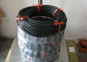 Viton Cord, FKM Cord, Fluorubber Cord Made with 100% Virgon Viton Rubber with Black Color pictures & photos