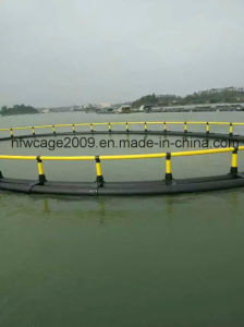 Fish Farming Net Sea Cage pictures & photos