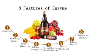 100% Natural Clear The Body Waste & Toxins Noni Enzymes pictures & photos