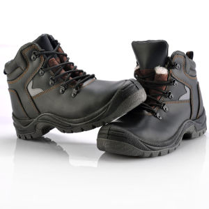 Winter Safety Shoes (M-8087) pictures & photos
