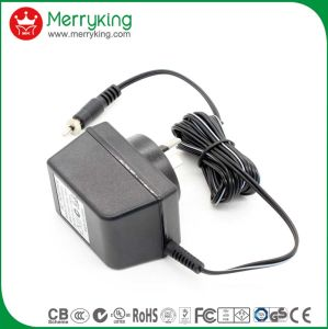 6W Linear Power Adaptor with SAA pictures & photos