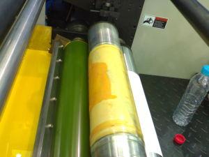 Flexo Printing Machine Label 5 Colour pictures & photos