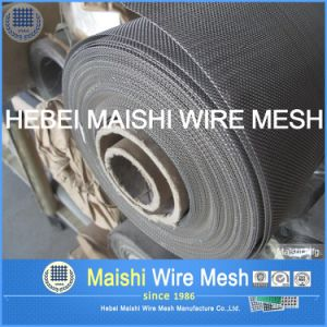 Hot Plain Weave Stainless Steel Wire Net pictures & photos