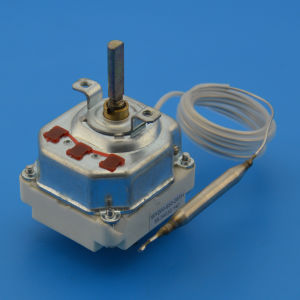 Electric Water Heater Capillary Thermostat pictures & photos