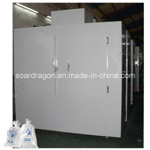 Customized Bagged Ice Freezer with Cold Wall System pictures & photos