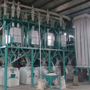 Grain Flour Milling Machine for Wheat/Maize/Corn (6FTF) pictures & photos