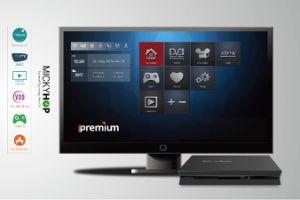 Ipremium Hybrid DVB & IPTV Box, Support Cccam/Newcam pictures & photos