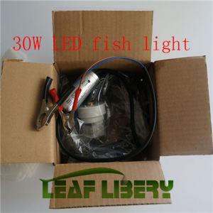china green blob outdoors blob-300 night fishing light led green, Reel Combo