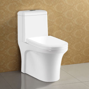 Double Flush S Trap 300mm 400mm One Piece Toilet pictures & photos