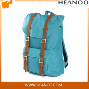 Wholesale Travelling America Herschel Backpack Manufacturers China for College pictures & photos