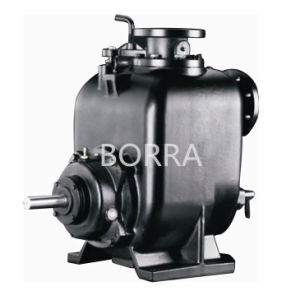 Self-Priming Trash Sewage Water Pump pictures & photos