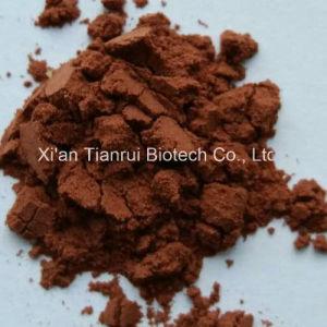 Fructus Rosae Laevigatae Extract/Rosa Laevigata Michx Powder pictures & photos