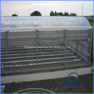 Production/Experiment /Commercial Large Small Polycarbonate Greenhouse for Plastic Sheet pictures & photos