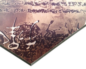 Brushed ACP Aluminum Composite Pane Manufacturer pictures & photos