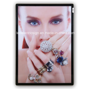 Jewellery Display with LED Light Box pictures & photos