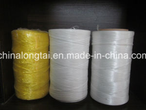 Good Quality Fibrillated Twisted PP Rope Raw Whitepp Rope pictures & photos