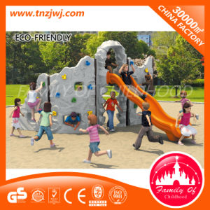 Interesting Climbing Park Equipment Outside Climbing Set pictures & photos
