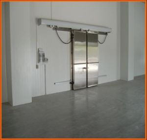 Chiller/Freezer Room/Blast Freezer for Frozen Meat and Fish pictures & photos