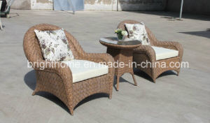 High Quality Hand-Made Wicker Garden Set/Outdoor Leisure Furniture (BP-237) pictures & photos