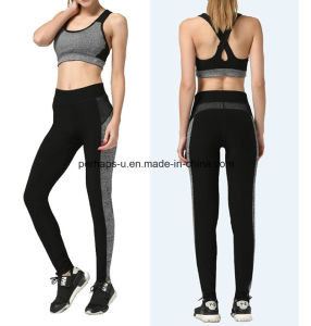 High Quality Quickly Dry Ladies Running Pants Yoga Suit pictures & photos