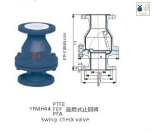 PFA Lined Swing Check Valve pictures & photos