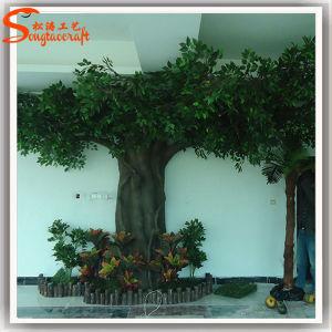 High Imitation Fiber Glass Artificial Ficus Tree pictures & photos