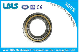 Bc1b320202A Extra Large Single Row Cylindrical Roller Bearing