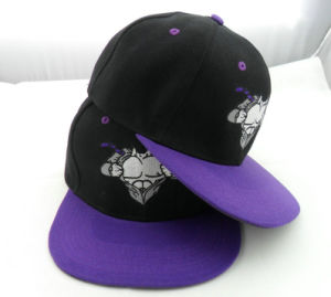 Custom Purple 6 Panel Embroidery Snapback Hats pictures & photos