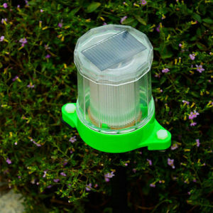 Solar Lawn Lamp (green lighting) pictures & photos
