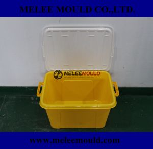 Melee Plastic Lid Container Box with Handle Moulding pictures & photos