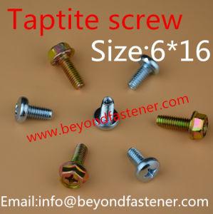 Screw Wing Tek Screw Self Tapping Screw pictures & photos