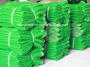 Scaffolding HDPE Net for Export pictures & photos