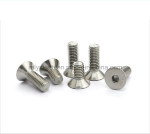 Stainless Steel Countersunk Hex Socket Flat Head Machine Screw M3-M10 pictures & photos