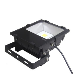 IP65 Waterproof LED Floodlight with High Quality COB LED pictures & photos